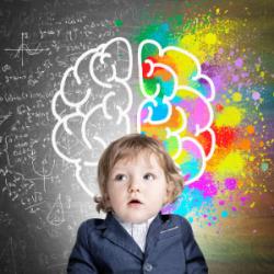 Мозговой штурм: книги о работе мозга для детей и подростков