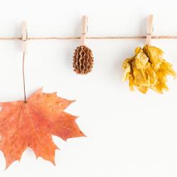 Осенние поделки — это несложно!