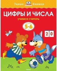 Цифры и числа (5-6 лет)