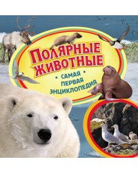 Полярные животные. Самая первая энциклопедия