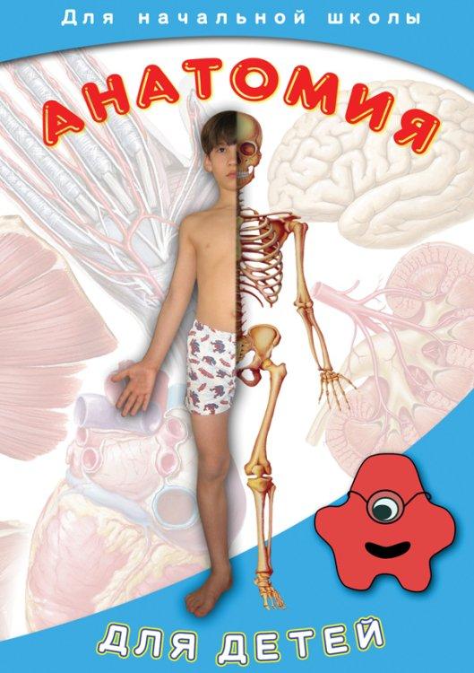 DVD. Анатомия для детей