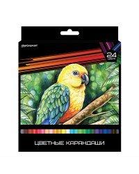 """Карандаши цветные """"Дикая планета"""", трехгранные, повышенной мягкости, 24 цвета"""