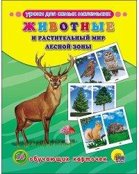 Обучающие карточки. Животные и растительный мир лесной зоны