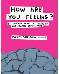How Are You Feeling? At the Centre of the Inside of The Human Brain's Mind