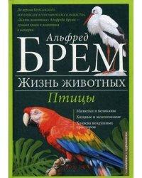 Жизнь животных. В 10-и томах. Том 5: Птицы. А-К