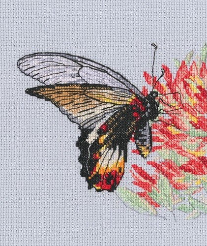 """Набор для вышивания """"Нектар для бабочки"""", 13.5x13 см"""