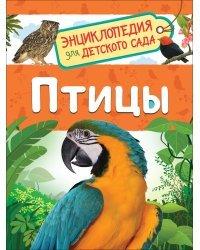 Птицы. Энциклопедия для детского сада