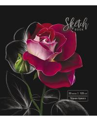 "Скетчбук ""Роза на чёрном"", 30 листов, А5"