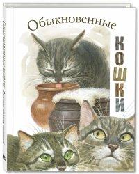 Обыкновенные кошки