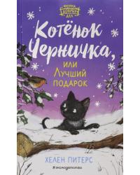 Котёнок Черничка, или Лучший подарок
