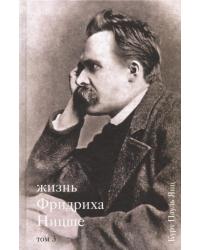 Жизнь Фридриха Ницше. Том 3