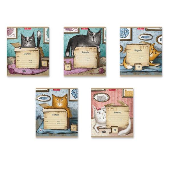 "Тетрадь ""Cat & Box"", А5, 18 листов, линия"