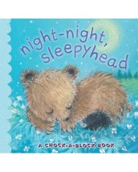 Night-Night, Sleepyhead. A Chock-a-Block Book