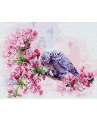 """Картина по номерам """"Влюбленные совы"""", 40x50 см"""