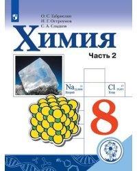 Химия. 8 класс. Учебник. В 2-х частях. Часть 2 (для слабовидящих обучающихся)