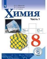 Химия. 8 класс. Учебник. В 2-х частях. Часть 1 (для слабовидящих обучающихся)