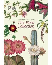The Flora Collection. Postcards in a Box