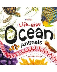 Life-size. Ocean Animals