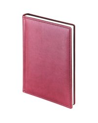 """Ежедневник на 2021 года """"Velvet"""", А5+, 168 листов, бордовый"""
