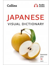 Japanese Visual Dictionary: A photo guide to everyday words and phrases in Japanese