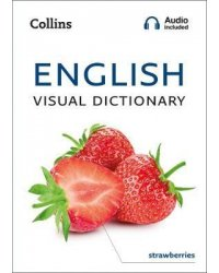 English Visual Dictionary: A photo guide to everyday words and phrases in English