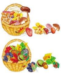 Комплект оформительский. Собери корзинку с грибами и дарами осени (количество томов: 2)