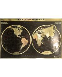 Интерьерная карта мира/полушарий (физическая)