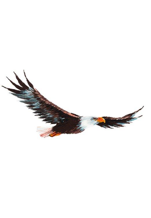 """Набор для вышивания """"PANNA. Живая картина. Орел"""", арт. JK-2200, 13x6,5 см"""