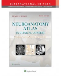 Neuroanatomy Atlas in Clinical Context. Structures, Sections, Systems, and Syndromes