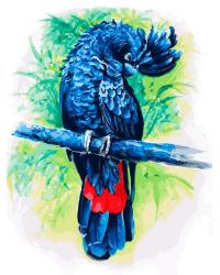 """Картина по номерам Белоснежка """"Синий попугай"""", 30x40 см"""