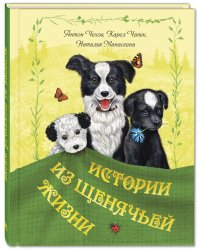 Истории из щенячьей жизни