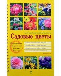 Садовые цветы. Цветущий сад с весны до осени