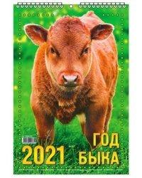 """Календарь настенный """"Год быка"""" на 2020 год (бык в траве)"""