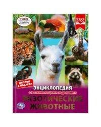 Экзотические животные. Энциклопедия с развивающими заданиями