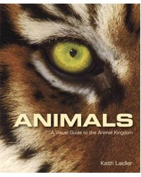 Animals. A Visual Guide to the Animal Kingdom