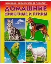 Дидактическое пособие. Домашние животные и птицы