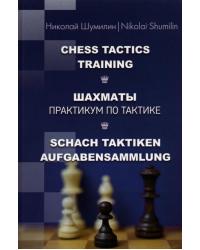 Шахматы. Практикум по тактике