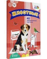 Животные. 40 дидактических карточек.