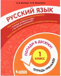 Русский язык. 1 класс. Тетрадь-тренажер