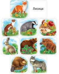"""Набор обучающих карточек """"Дикие животные и птицы"""""""