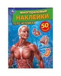 Тело человека. Активити многоразовыми наклейками